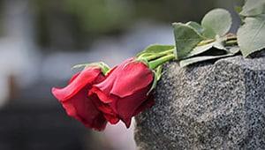 Cartas de condolencias